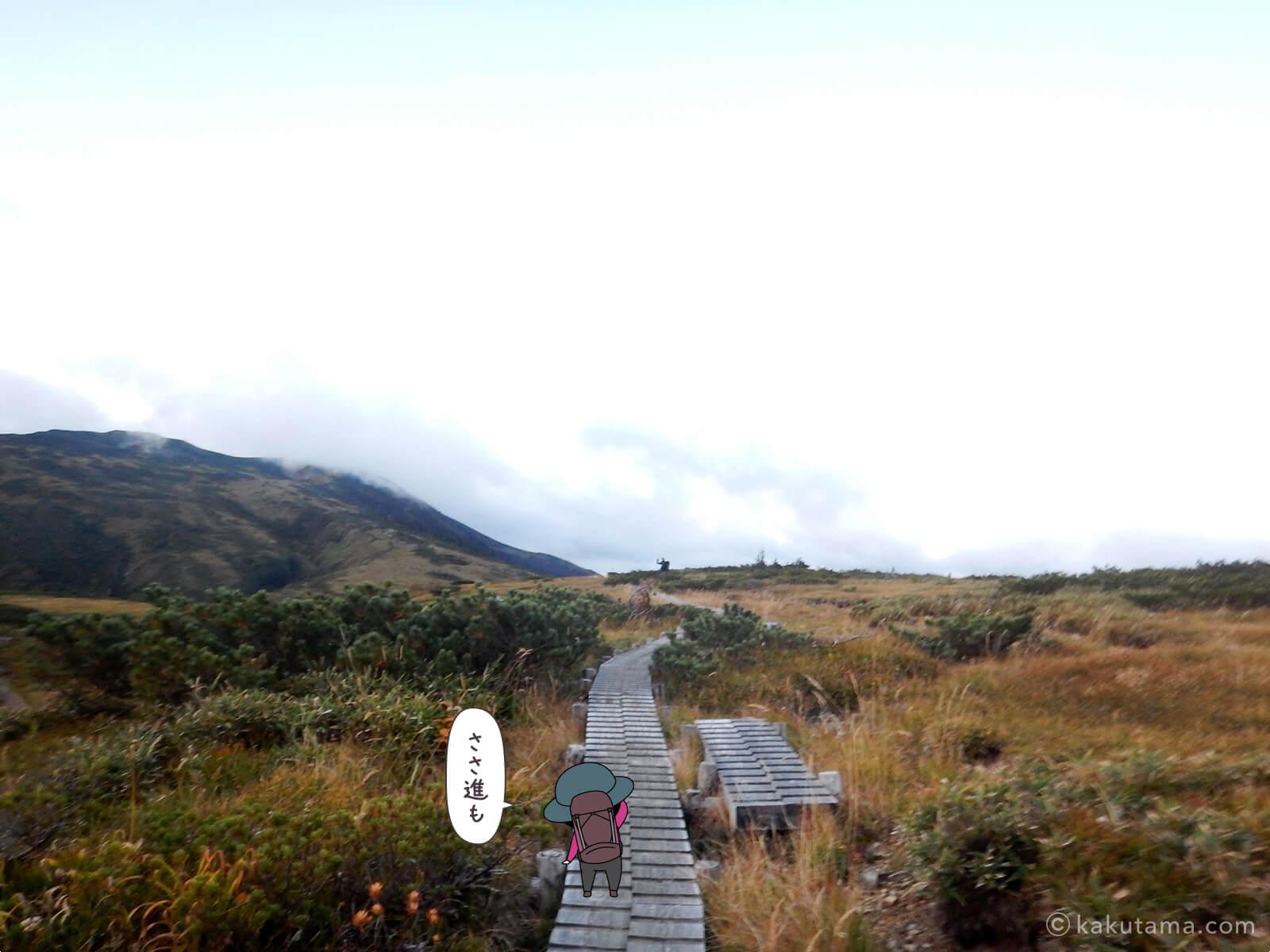 太郎山分岐からの木道
