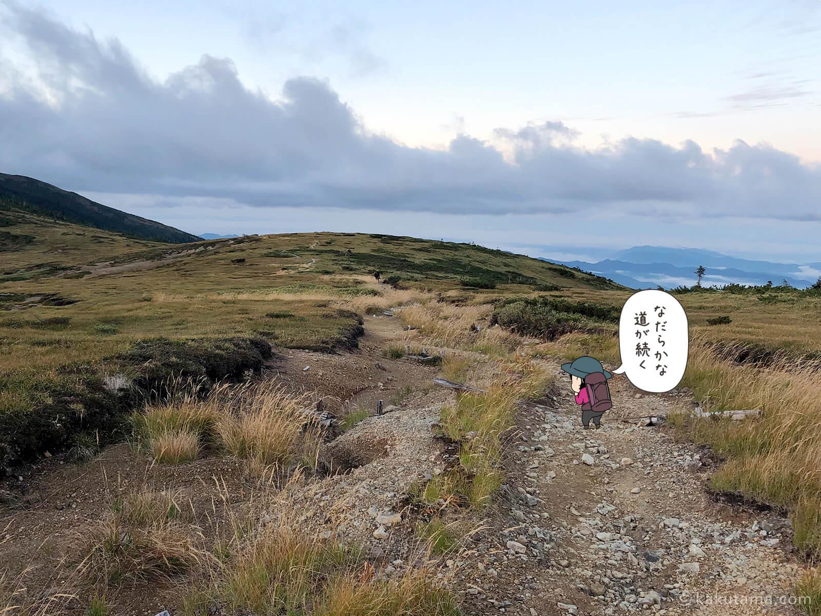 太郎山分岐からの登山道1