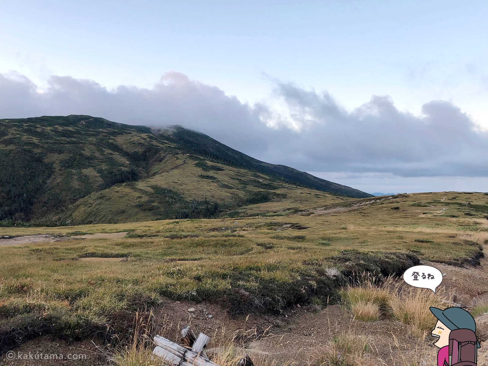 太郎山分岐からの登山道2