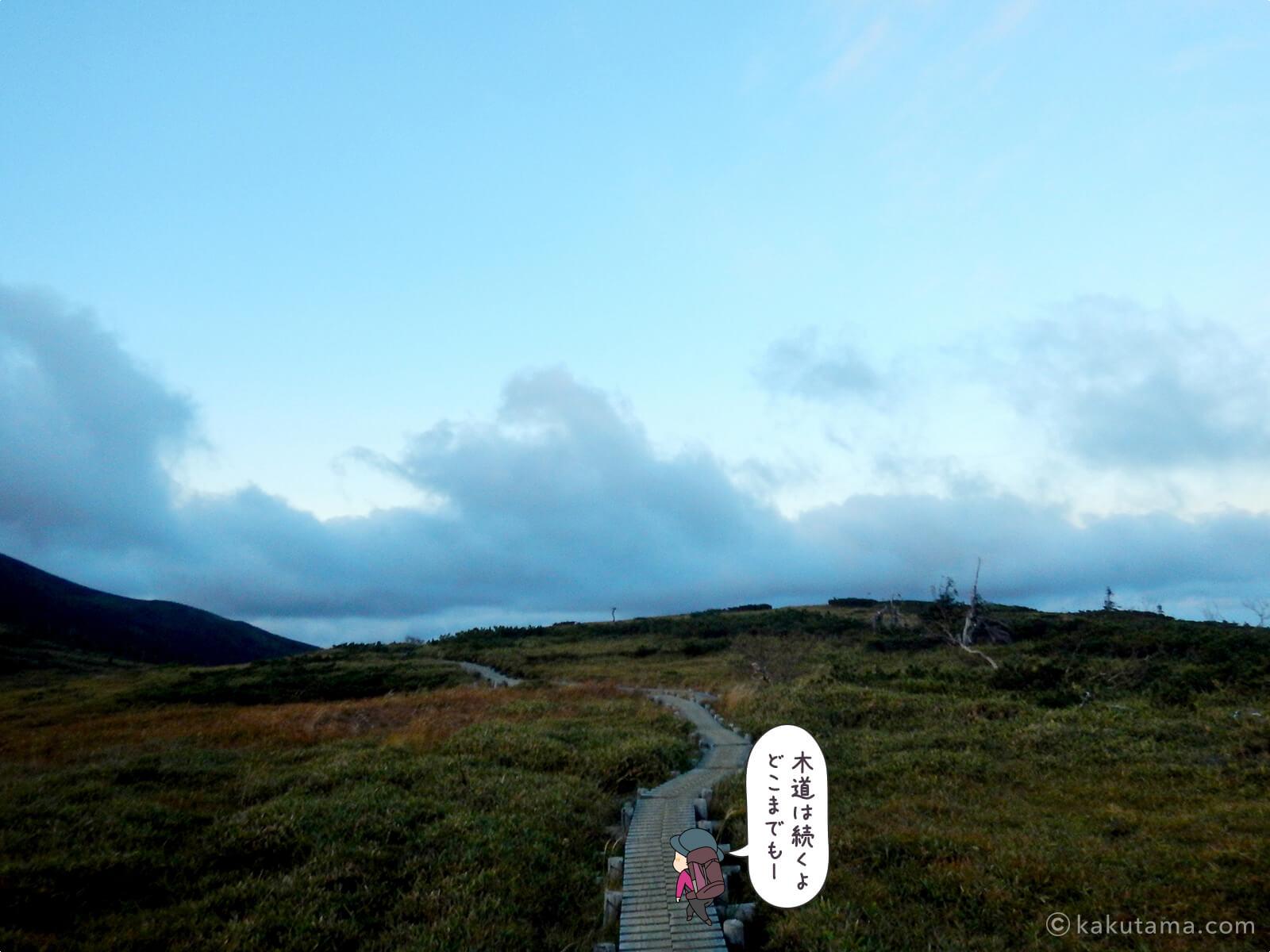 太郎山分岐からの登山道4