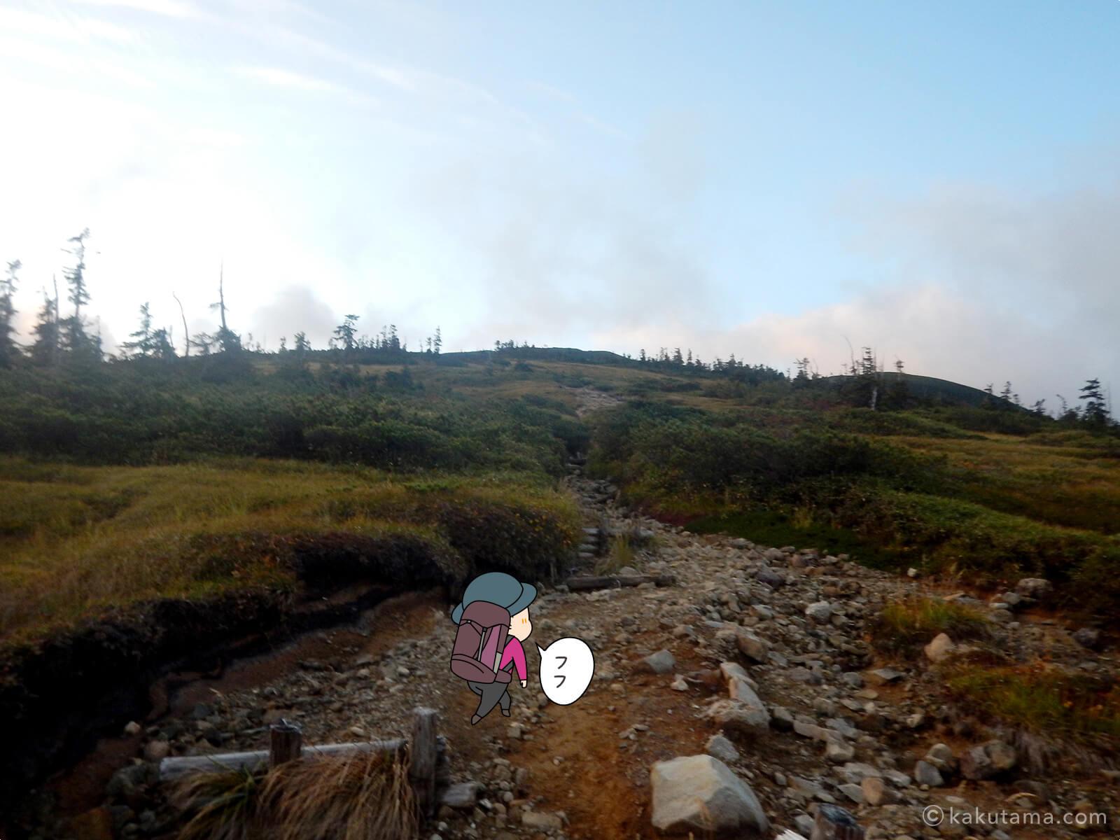 北ノ俣岳へ続いていく木道3