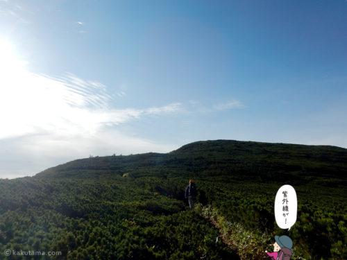 黒部五郎岳へ向かって進む2