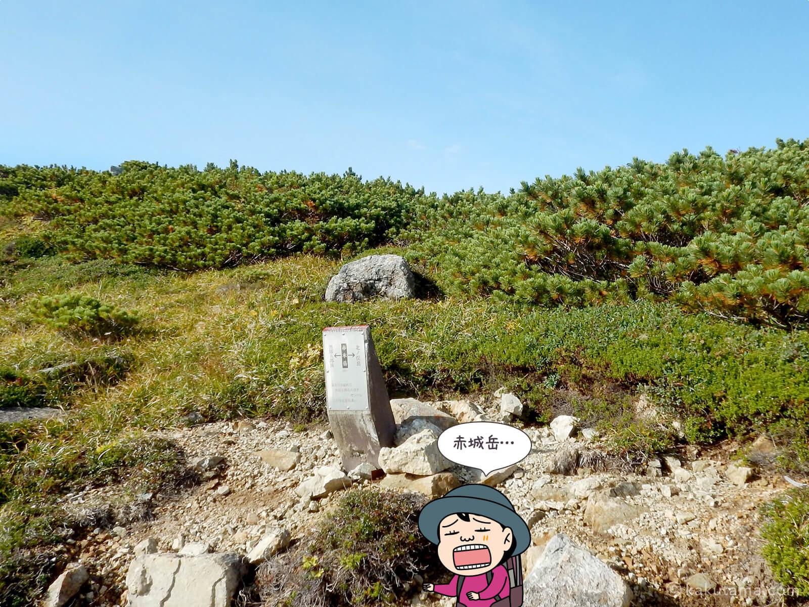 赤木岳に到着