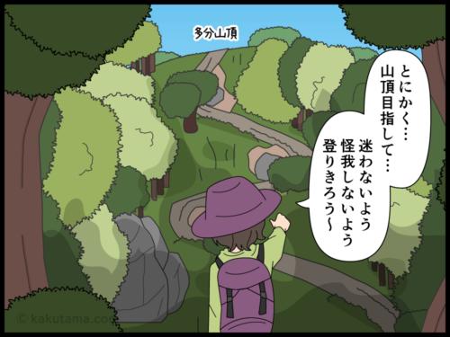 登山道ではずっと一人だったので山頂は賑わっていることにビックリする登山者の漫画2