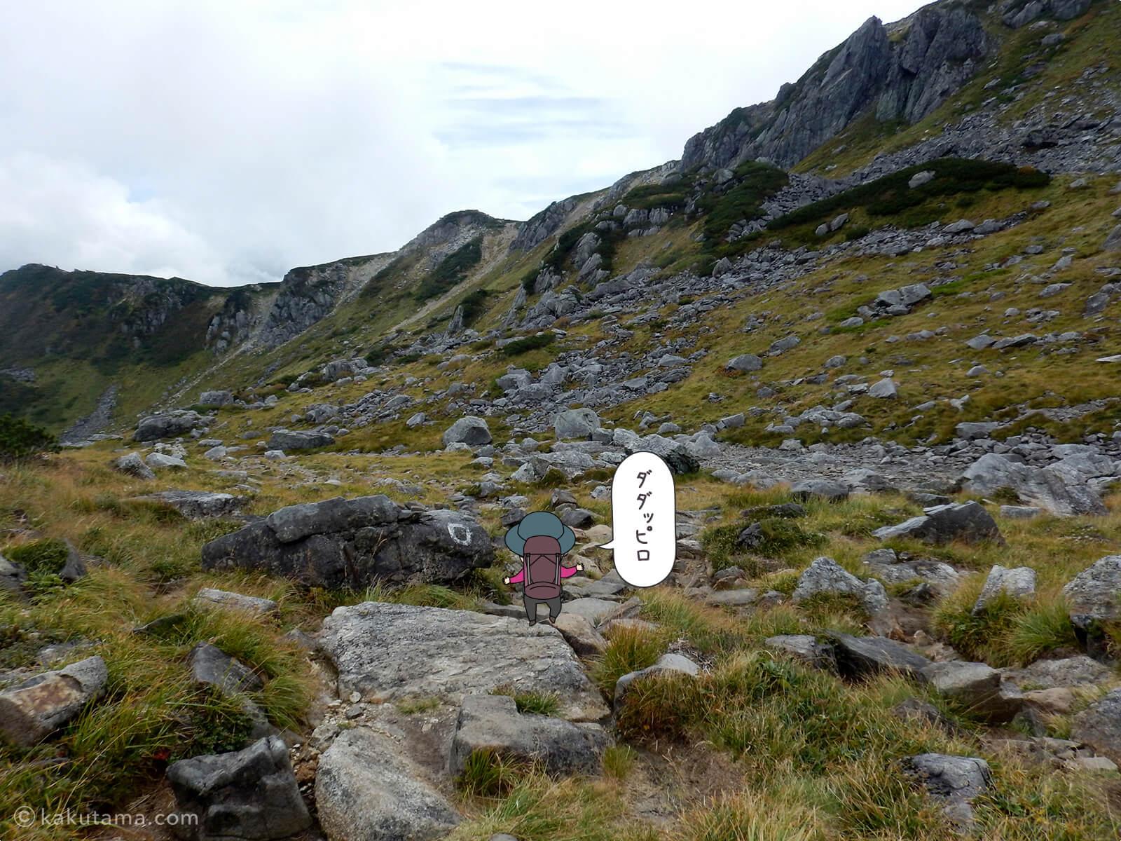 広がる登山道