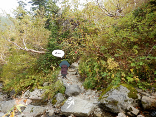 樹林帯と岩場
