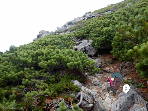 岩場とハイマツの間を登る