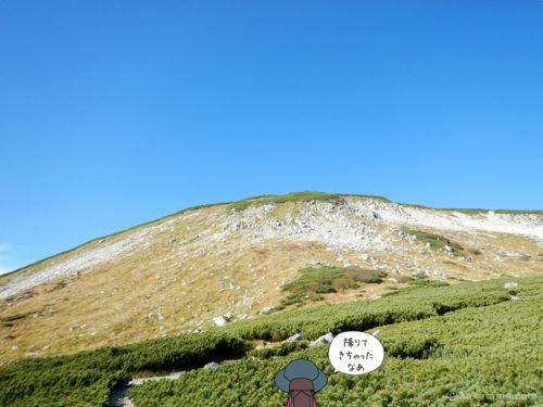 双六岳を見上げる