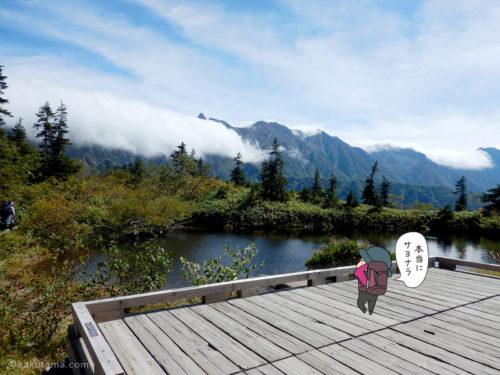 鏡平山荘裏手から槍ヶ岳を見る