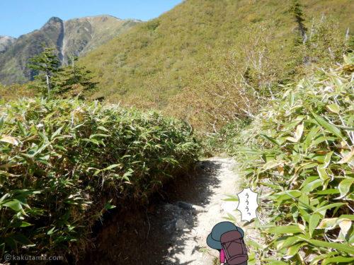 鏡平山荘から下る