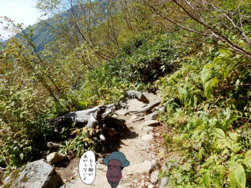 鏡平山荘から下る2