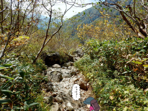 鏡平山荘から下る3