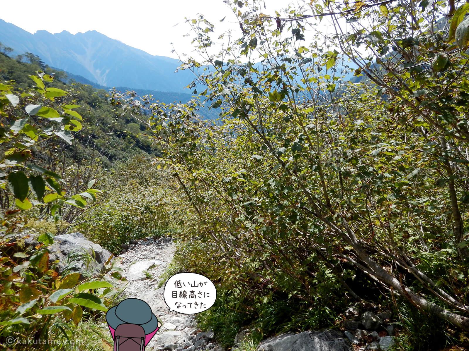 鏡平山荘から下る4