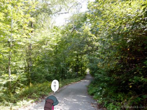 林道歩き2