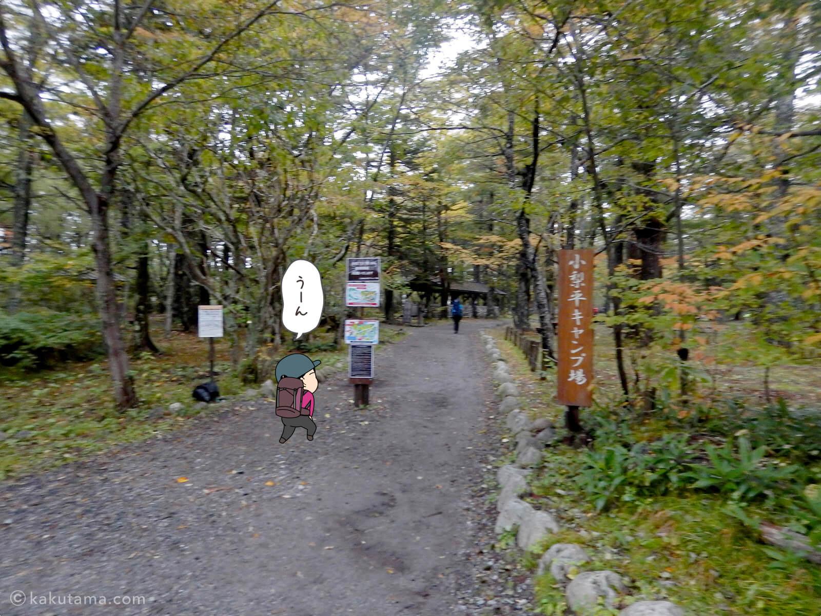 小梨平キャンプ場2