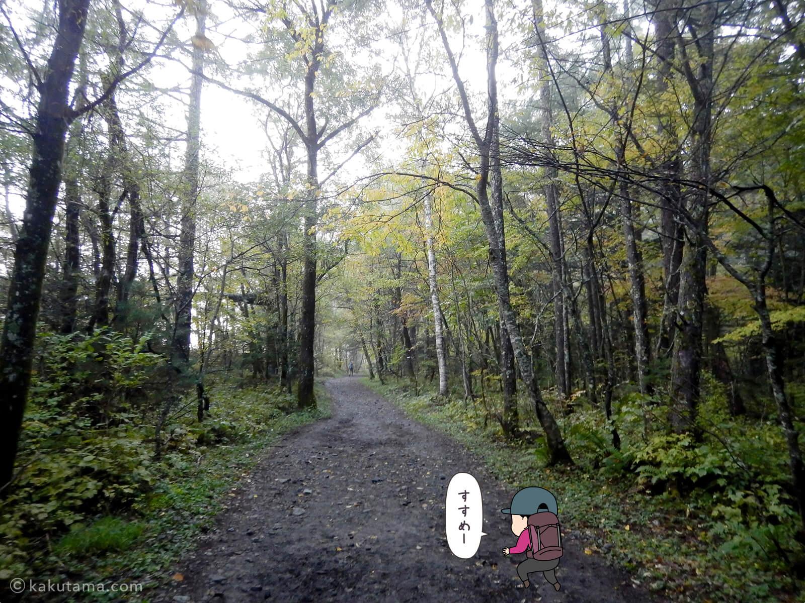 明神館〜徳沢間を歩く3