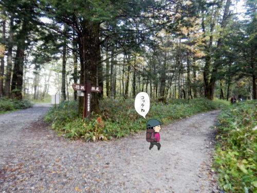 徳沢〜横尾間を歩く1