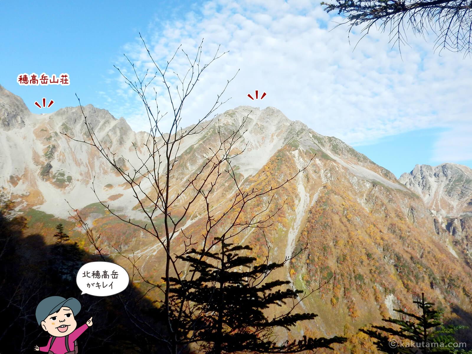 北穂高岳を眺める