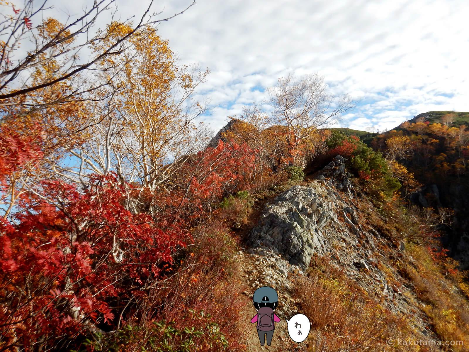 屏風岩と紅葉