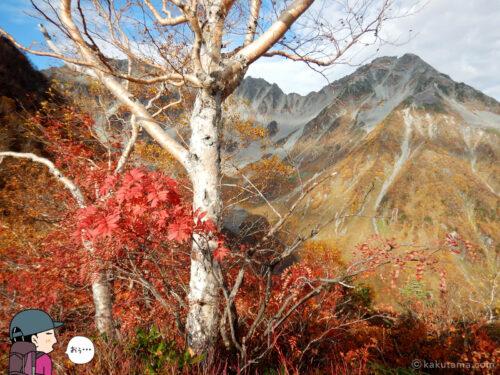 山々と紅葉