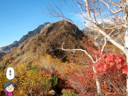屏風岩と紅葉1