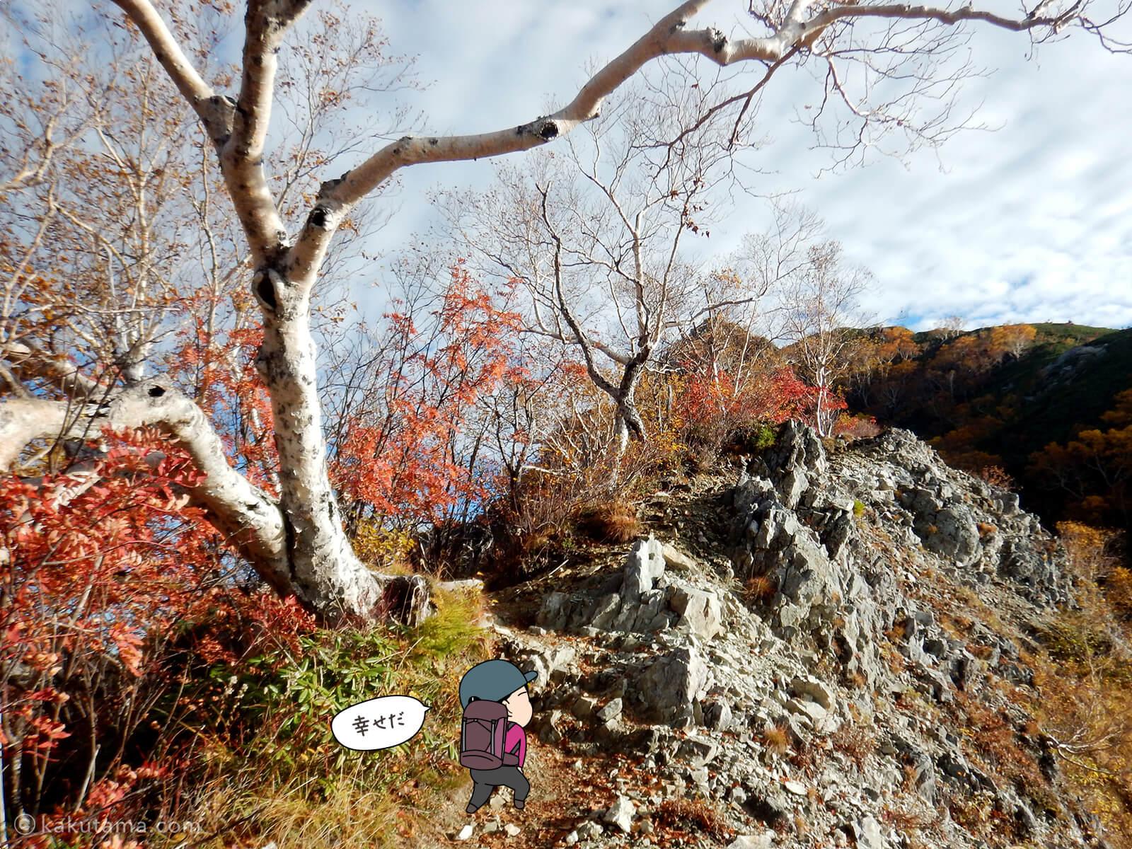 屏風岩と紅葉2