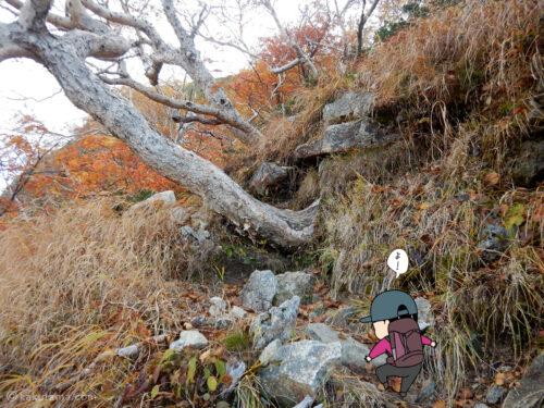 岩道の急登1