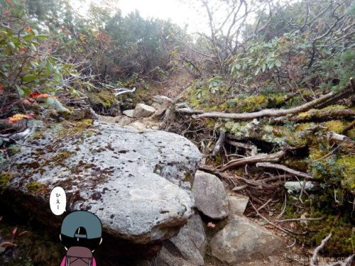 岩道の急登3