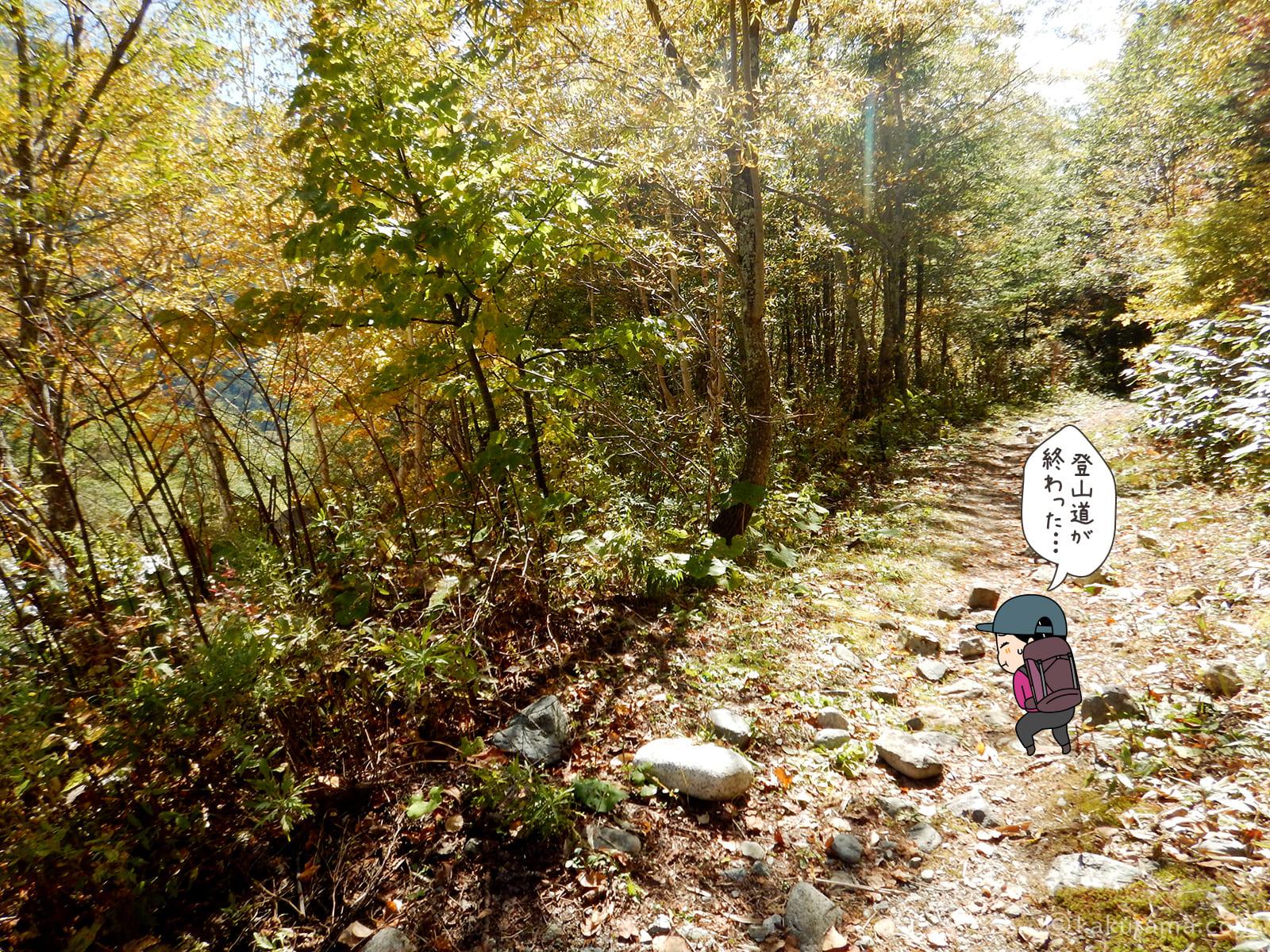林道を歩く1