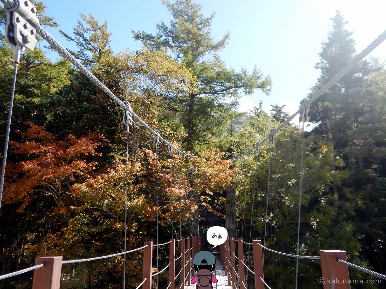 新村橋と紅葉1