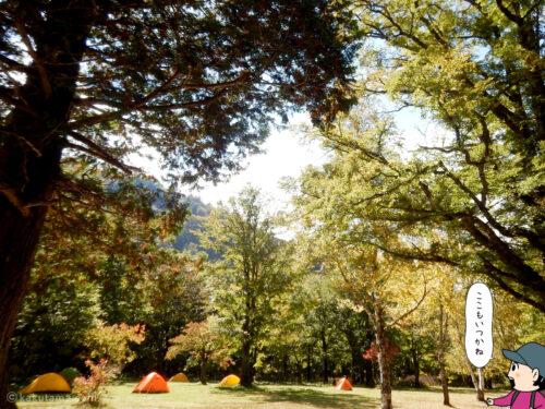 徳沢園のテント場