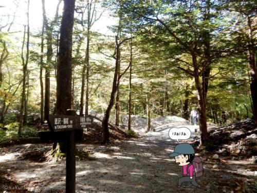 上高地への林道3