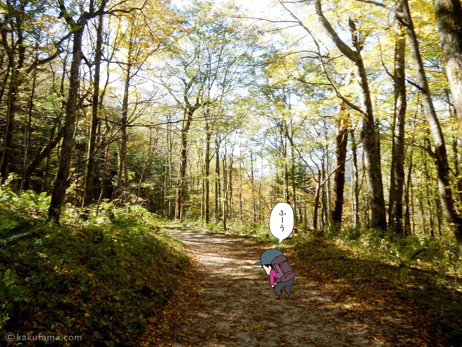 上高地への林道4