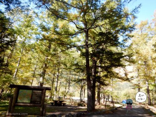 上高地への林道6