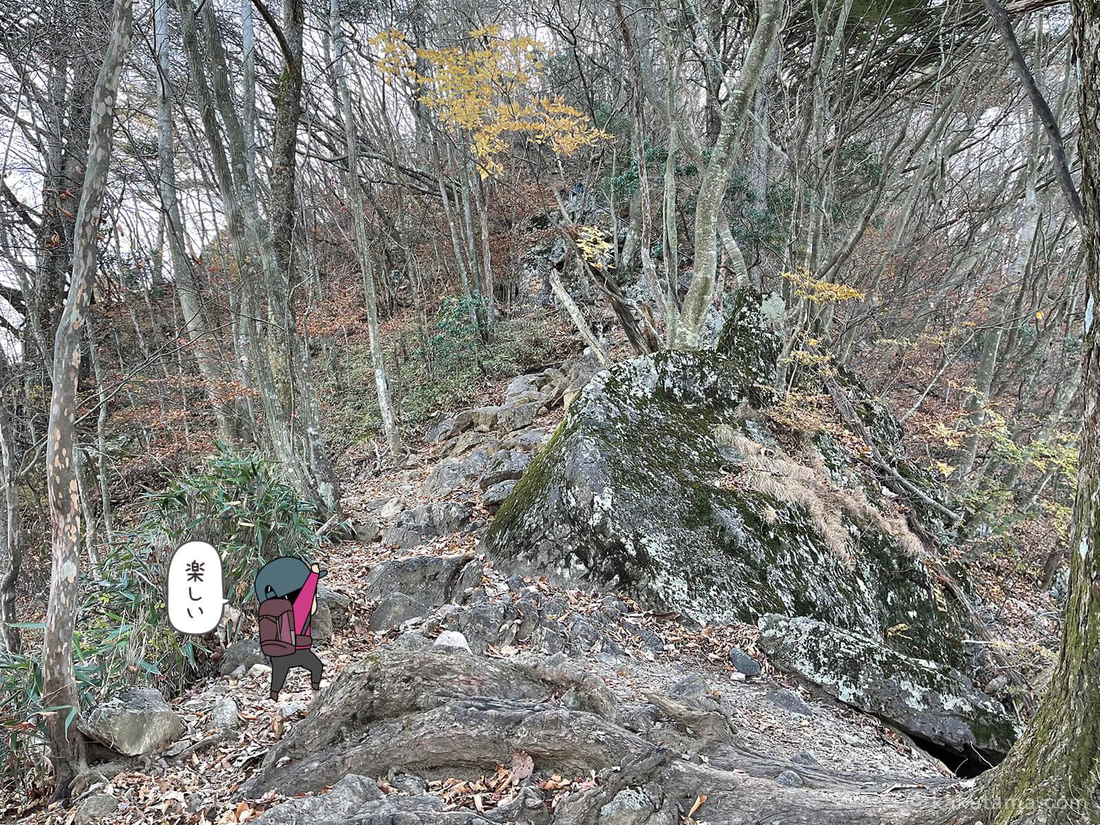 鋸尾根を登り続ける