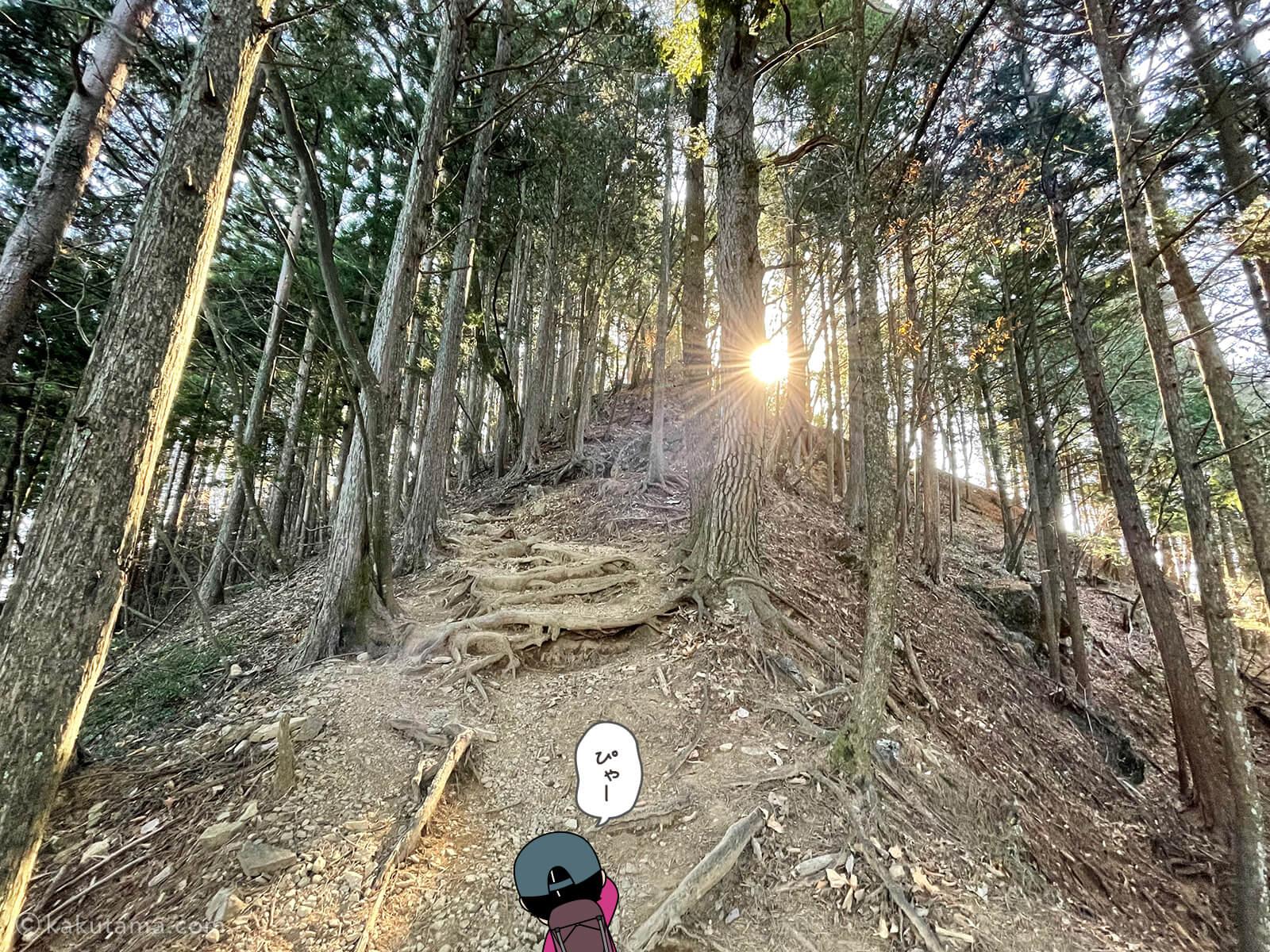 鋸山を登る2
