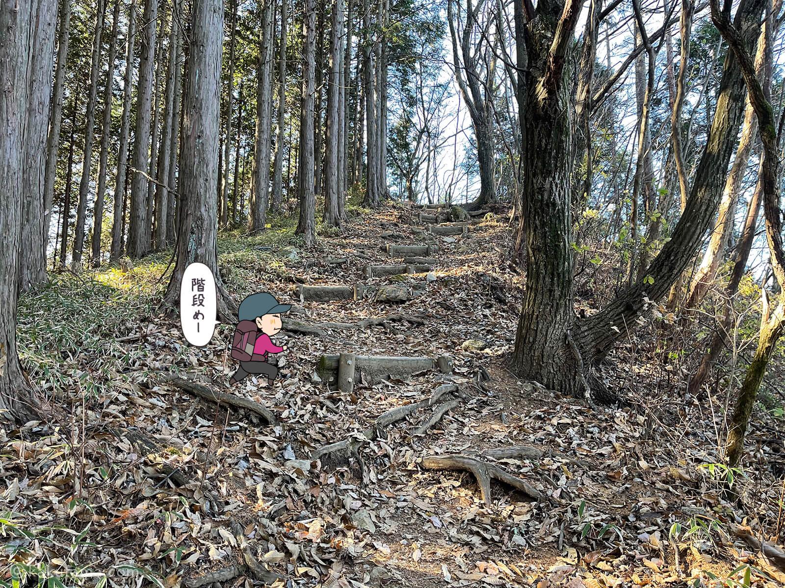 山道を歩く3