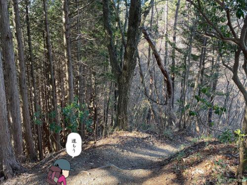クロノ尾山から御前山へ歩き出す1