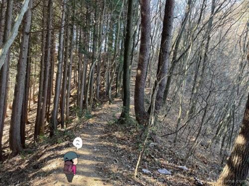 クロノ尾山から御前山へ歩き出す2