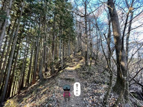 クロノ尾山から御前山へ歩き出す6