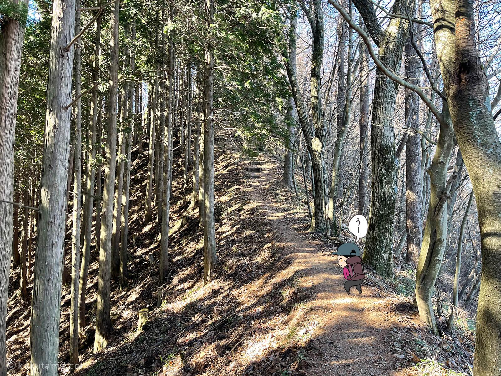 クロノ尾山から御前山へ歩き出す7