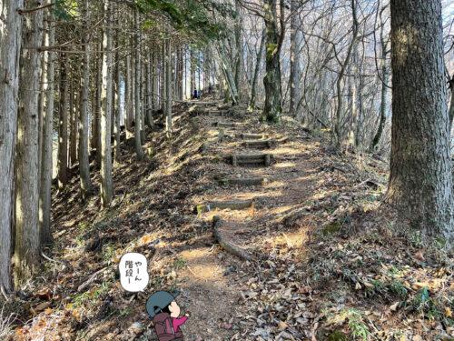 クロノ尾山から御前山へ歩き出す8