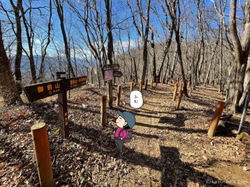 御前山と惣岳山への道標2