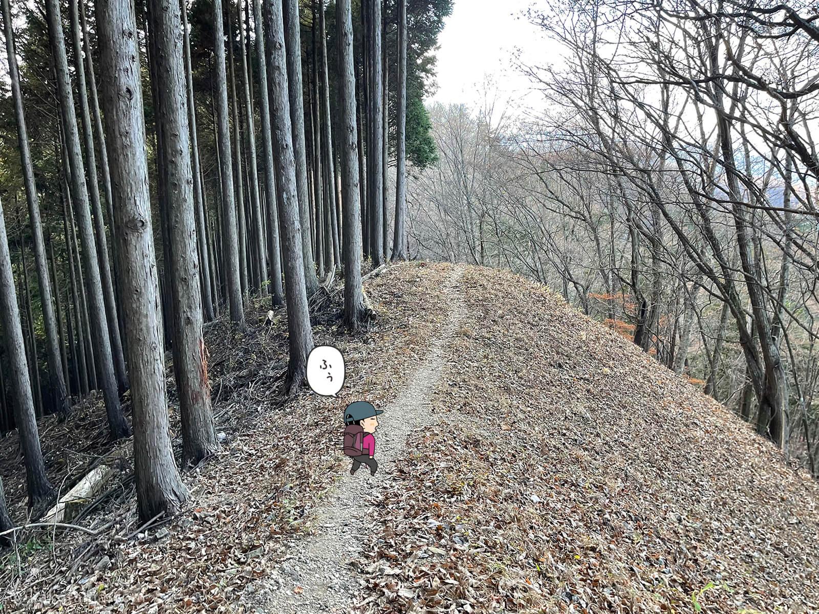 気持ちの良い山歩き5