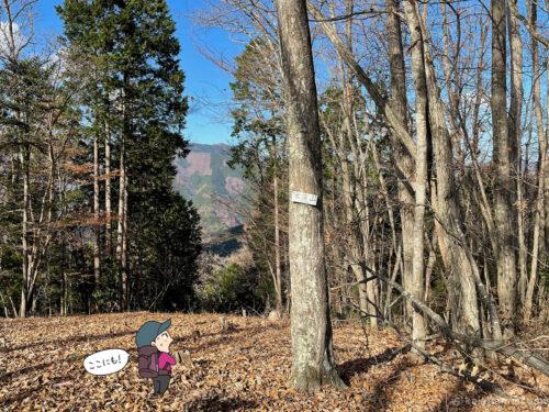 水窪山の標識2