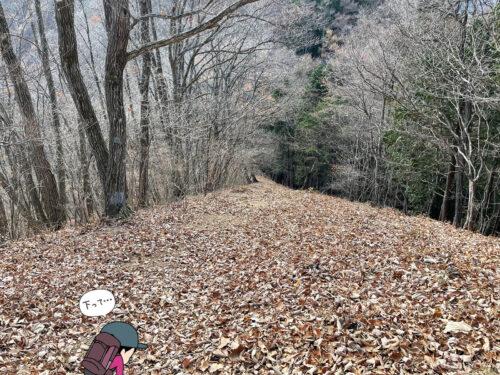 枯れ葉の道が続く1