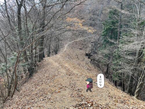 枯れ葉の道が続く3