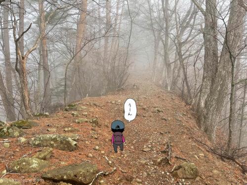 ガスっている登山道2