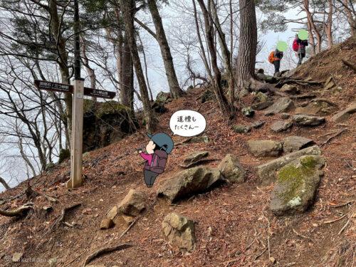 ひたすら登る3