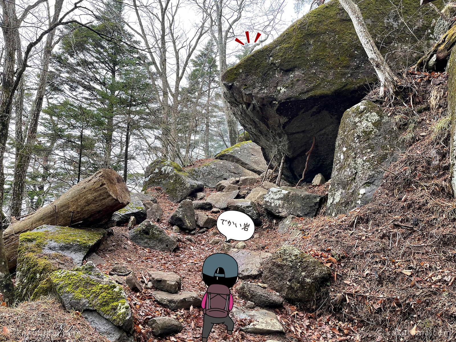 大きな石が見えた
